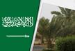 საუდის არაბეთში სავაჭრო ცენტრებში სიარულს მხოლოდ ვაქცინირებულები შეძლებენ