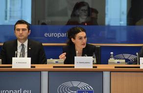 Кетеван Цихелашвили обратилась к  европарламентариям от имени жителей Ахалгори - ВИДЕО