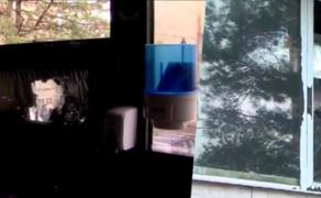 Разбито стекло в предвыборном штабе Ники Мелия и Елены Хоштария