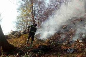 Пожары в лесах Рачи, Самегрело и Сванети