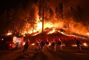 В Калифорнии бушует пожар