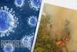 Эксперты опасаются новых пандемий
