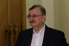 Гоциридзе: Слушания по отчету президента не будут спокойными
