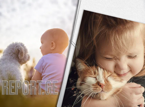 Why do children abuse animals? - Psychologist explains