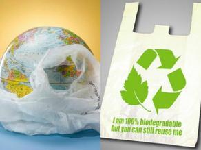 На производствах биодеградируемых пакетов будет усилен контроль - Exclusive