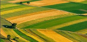 მიწის სისტემური რეგისტრაცია 5 მუნიციპალიტეტში იწყება