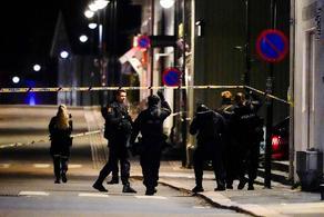ნორვეგიაში კაცმა მშვილდ-ისრით რამდენიმე ადამიანი მოკლა