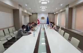 სახელმწიფო მინისტრი ჟენევის ფორმატის თანათავმჯდომარეებს შეხვდა