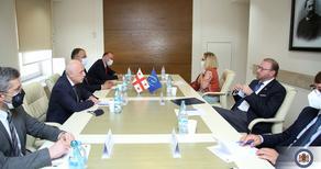 ზალკალიანი ევროპის საბჭოს საპარლამენტო ასამბლეის პრეზიდენტს შეხვდა