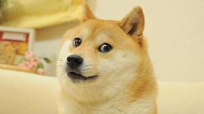 DOGE-ს ფოტო აუქციონზე 4 მილიონ დოლარად გაიყიდა