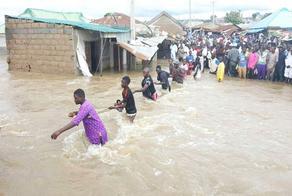 ნიგერში წყალდიდობას 35 ადამიანი ემსხვერპლა