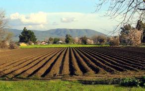 რა გაამარტივებს მიწის სისტემურ რეგისტრაციას