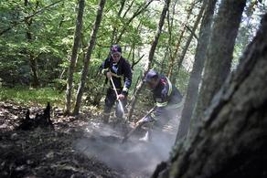 Пожар в лесопарке Боржоми-Харагаули потушен