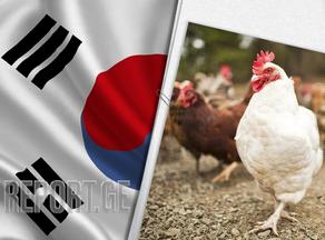 სამხრეთ კორეაში ფრინველის გრიპის 105 კერა დადასტურდა