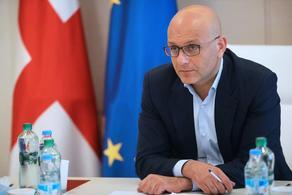 Иване Мачавариани выступил на заседании парламентских комитетов