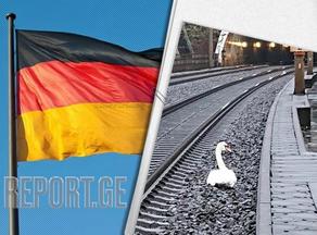 Скорбящий лебедь остановил движение поездов