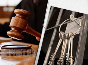 სისხლის სამართლის მუხლები, რომელსაც ამნისტია შეეხება