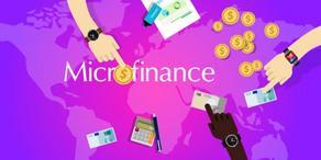 Микрофинансовый сектор Грузии набирает силы