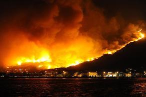ინდონეზია ტყეებში ცეცხლთან საბრძოლველად უფრო მეტ ადამიანს გზავნის