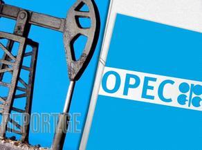 OPEC 2021-2022 წლებში ნავთობზე მოთხოვნის ზრდას მოელის