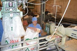 Когда завод Agaris Shakari сможет возобновить свое производство