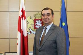 Министром образования назначен Михаил Чхенкели