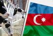 Азербайджан более чем вдвое увеличил импорт живого скота из Грузии