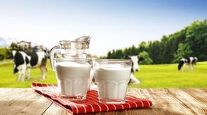 ფერმერები რძის ინდუსტრიის სიახლეებს გაეცნობიან