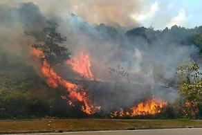 На хребте Гомбори пожар