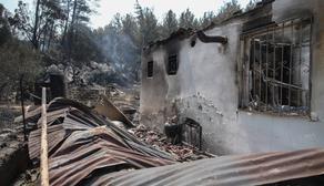 თურქეთში ტყის ხანძრების შედეგად გარდაცვლილთა რაოდენობა კვლავ გაიზარდა