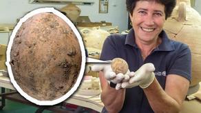 ისრაელში ქათმის 1000 წლის კვერცხი და უძველესი თოჯინები აღმოაჩინეს