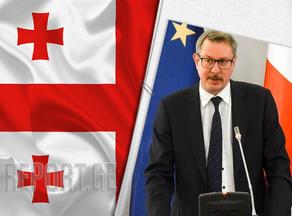 Карл Харцель о вчерашнем противостоянии между лидерами Грузинской мечты и ЕНД