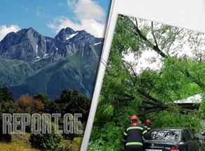 Стихия в Раче - сильный ветер сорвал крыши домов и выкорчевал деревья