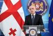 Залкалиани: Мы приложили максимум усилий для реализации этого гуманитарного акта