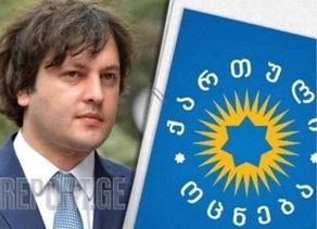 GD chairperson says Dmanisi offence 'has no justification'