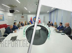 ნათია თურნავა სომხეთის ეკონომიკის მინისტრს შეხვდა