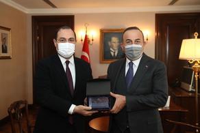Ambassador of Georgia Giorgi Janjgava meets with Minister of Foreign Affairs of Turkey