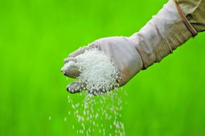 Export of fertilizers from Georgia to Azerbaijan increases
