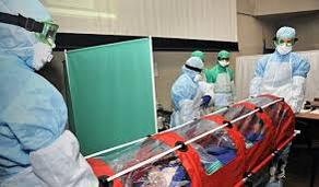 Number of infected with coronavirus increases to 351 in Belarus