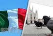 В Италии произошла вспышка птичьего гриппа