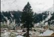 В Гурии выпал снег - ФОТО