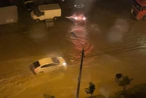 Heavy rains bring floods to Tbilisi's Didi Dighomi area  - PHOTO - VIDEO