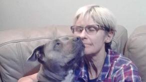 ავსტრალიაში ქალი ძაღლთან და 2 მეგობართან ერთად დაიკარგა