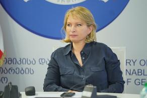 Натия Турнава встретилась с новым советником по инвестициям