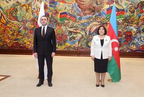 Georgian Prime Minister meets with Chairwoman of Milli Majlis
