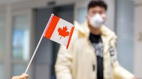 კანადაში კორონავირუსით ინფიცირებულთა რიცხვი 11747-მდე გაიზარდა