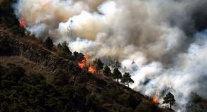 Village Muzhava mountain is on fire