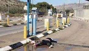 ისრაელის ჯარისკაცებმა პალესტინელ ქალს ესროლეს