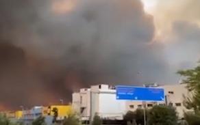 В Афинах бушует крупный лесной пожар