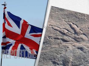 4 წლის გოგონამ დინოზავრის 220 მილიონი წლის წინანდელი ნაკვალევი აღმოაჩინა